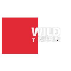 Reseña del casino Wild Tokyo